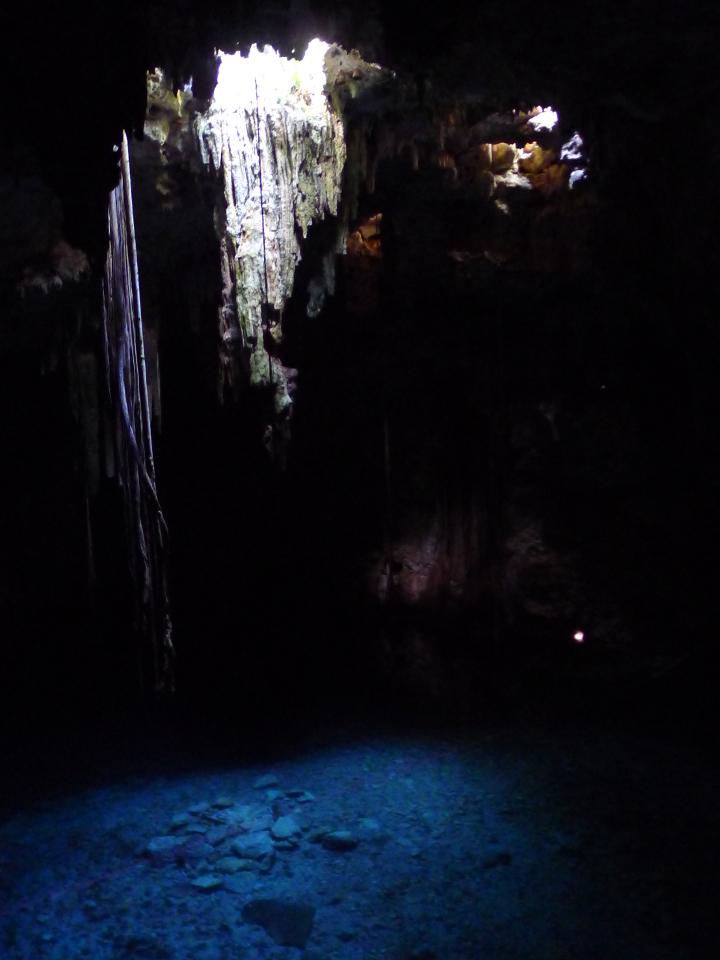 Cenote © Maja Christ