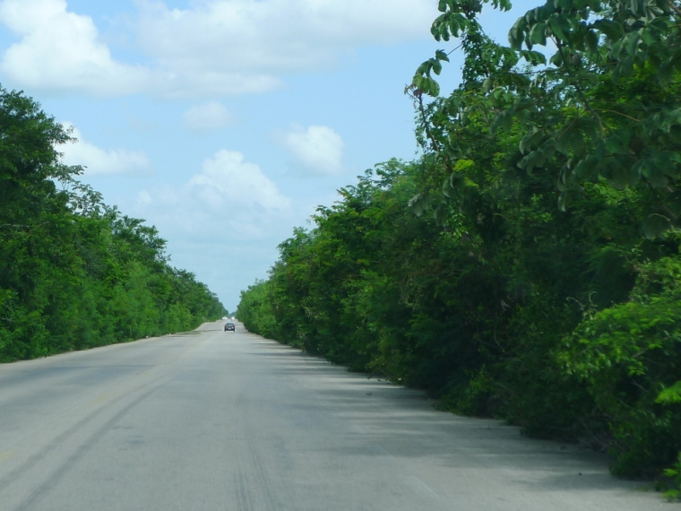 Straße in Yucatan mit Dschungel © Maja Christ