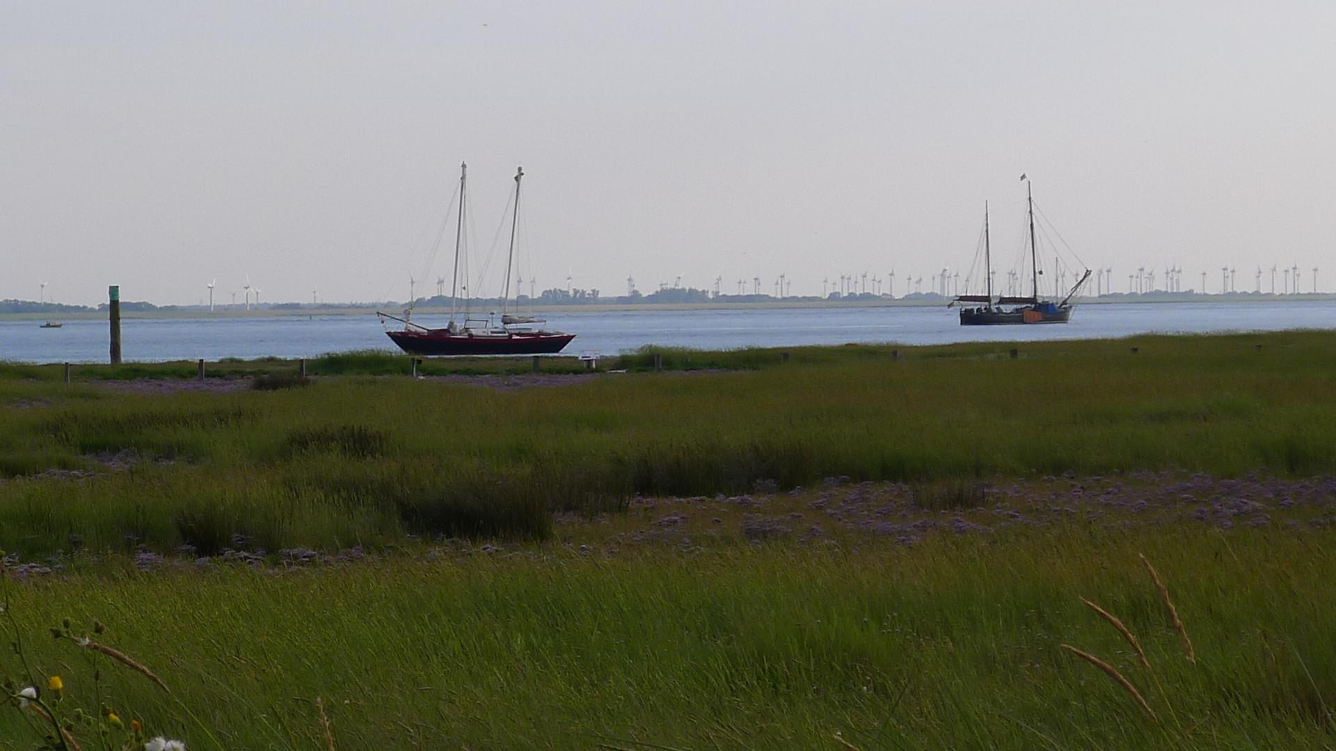 Blick zum Yachthafen Baltrum © Maja Christ